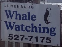 Store front for Lunenburg Whale Watching